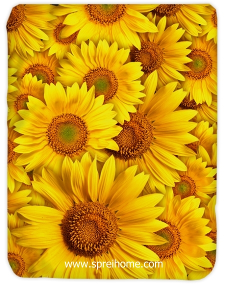 toko grosir murah Selimut Kendra Sunflower
