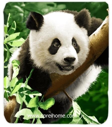 jual grosir Selimut Kendra Panda