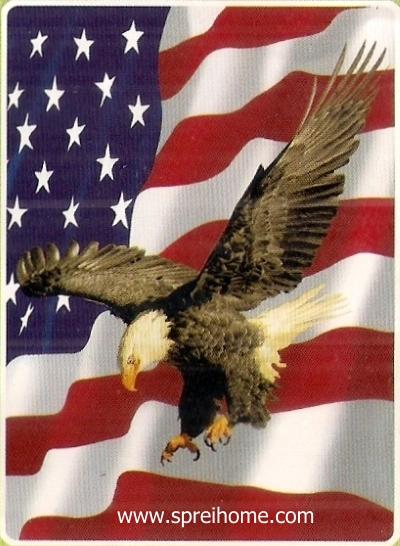 04 Selimut Rosanna Sutera Eagle Amerika