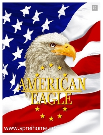 grosir gudang Selimut Rosanna Panel American eagle