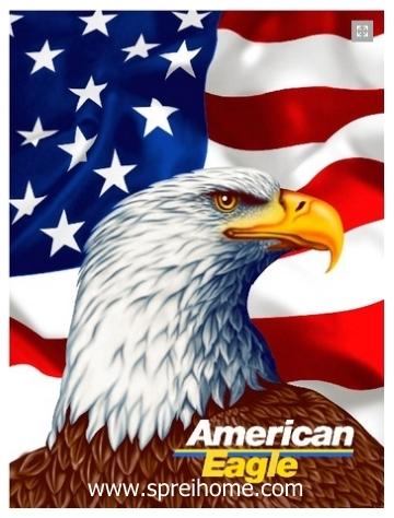 25-amerika-eagle