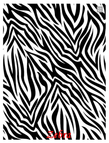 28-zebra